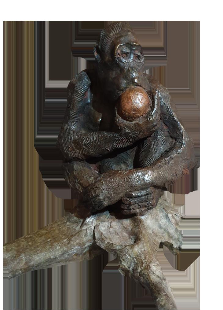 ''Pongo'' Bronze 1900€